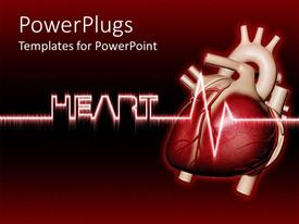 Presentation theme enhanced with real human heart with heartbeat, Heart written in cool text