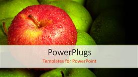 Beautiful presentation theme with a number of apples with blackish background