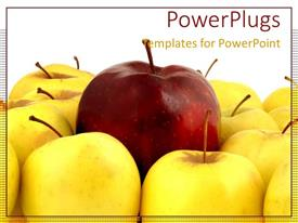 Colorful presentation design having red apple with yellow apples standing out metaphor unique special leadership