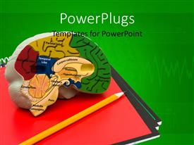 Colorful PPT theme having a representation of brain with greenish background