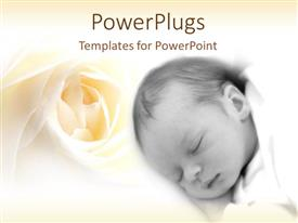 Colorful presentation theme having rested face of sleeping newborn baby with ivory rose on bright background