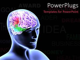 PPT theme featuring scan of human head showing colorful brain over black background