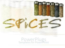 PPT layouts with seven chars of colorful household spices over white background
