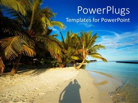 Audience pleasing PPT layouts featuring shadow of happy couple on beach sand with palms and blue sky