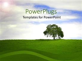 PPT theme with single tree on top of a hilly grass landscape