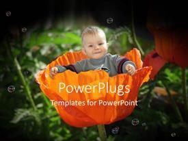 Slides featuring smiling baby sitting in large orange poppy flower