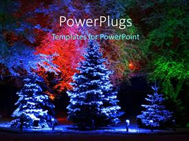 PPT theme having snow falling on Christmas tree with beautiful lightning and flowers in background