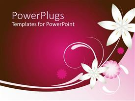 Colorful presentation having solid dark pink background with white and pink  flower designs
