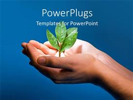 Presentation theme featuring spotlight on plant sprouting from human hand on blue background