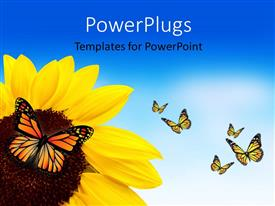 Audience pleasing PPT layouts featuring a sunflower with a lot of butterflies around it