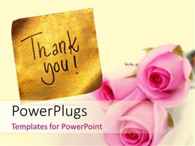 Audience pleasing slide set featuring thank you message handwritten on gold sticker with pink roses