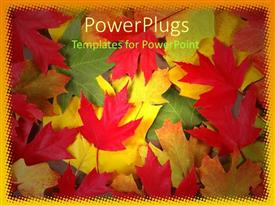 PPT theme consisting of a theme of collection of leaves of various colors