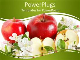 Presentation theme consisting of three red apples, one cut in half, surrounded with white flowers and green leaves