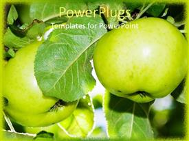 PPT theme featuring two apples along with leaves in the background