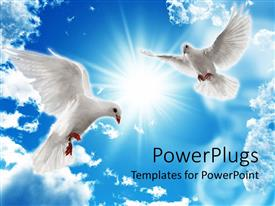 Audience pleasing PPT theme featuring two dove looking down from a bright shiny blue sky