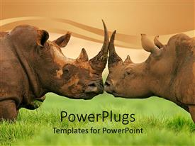 4000 white rhinoceros powerpoint templates w white rhinoceros