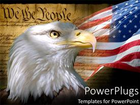 Audience pleasing slide deck featuring united states constitution as a metaphor of patriotism for american flag with california bald eagle