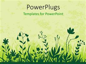 Presentation design with vector illustration of flowers in green