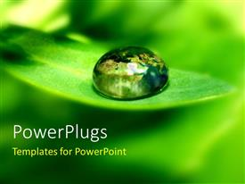 Beautiful PPT theme with a water droplet on the green leaf with blur background