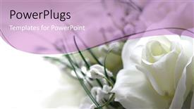 PPT theme with white rose in the corner with white and light purple background