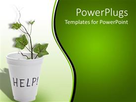 Presentation theme consisting of white vase with a plant with text Help on it