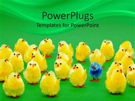 PPT theme featuring yellow chicks with one distinct blue chick on green background