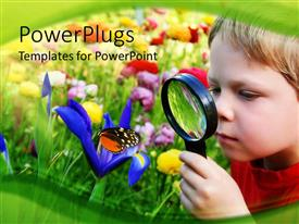 Beautiful PPT layouts with young boy looking at beautiful flowerthrough magnifying glass