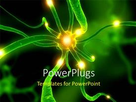 Biology Powerpoint Templates W Biology Themed Backgrounds