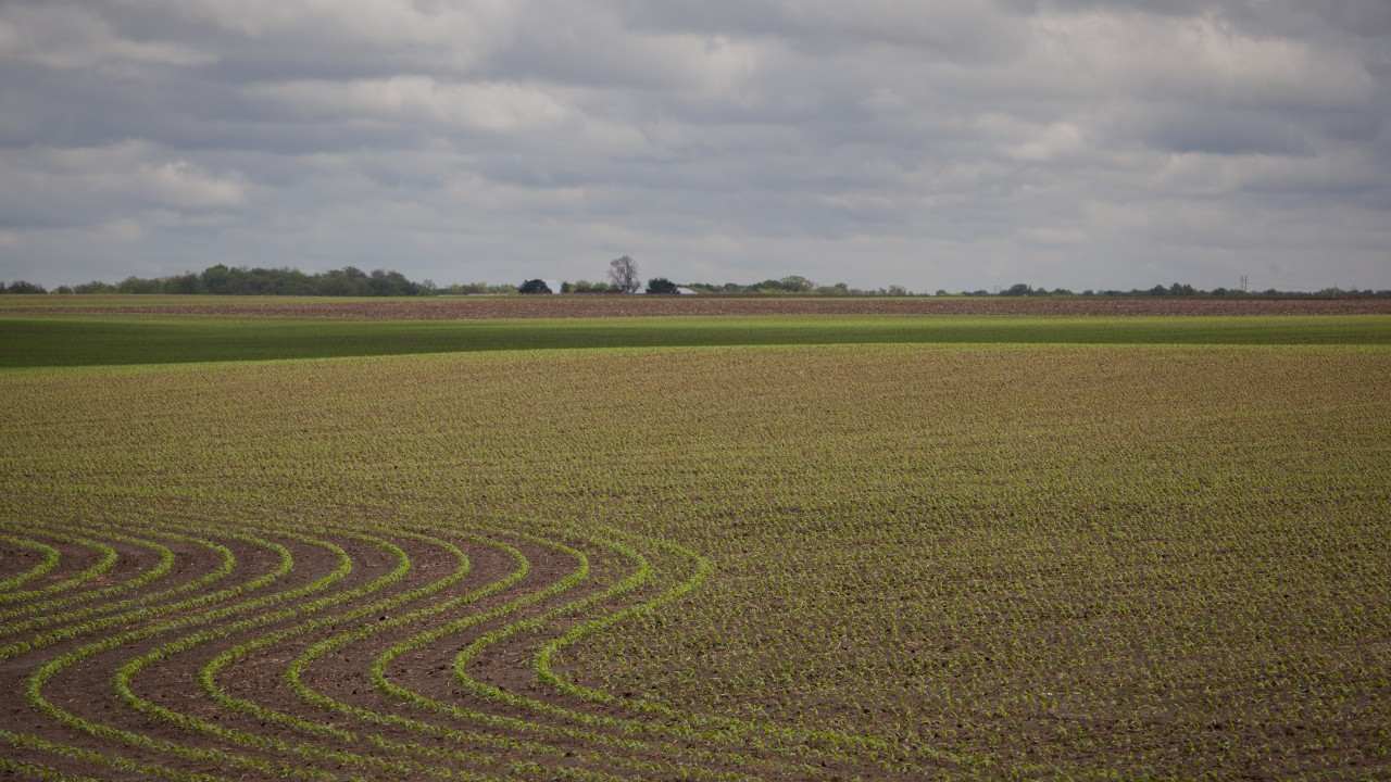 Agronomic Insights with Precision Planting's Jason Webster