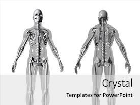 PPT theme featuring 3d model of human body background and a light gray colored foreground.