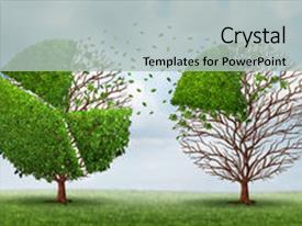 PPT layouts enhanced with a summer sky background background and a light gray colored foreground.