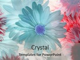 Cool new slide deck with abstract flowers - transparent background by flower backdrop and a light gray colored foreground.