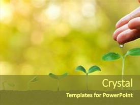 5000 plant powerpoint templates w plant themed backgrounds audience pleasing presentation design consisting of agriculture growing plants plant seedling backdrop and a tawny brown toneelgroepblik Images