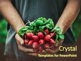 Organic farming powerpoint presentation.