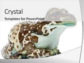 Amazon Theme Powerpoint Templates W Amazon Theme Themed