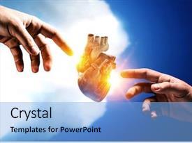 500+ Anatomy Physiology PowerPoint Templates w/ Anatomy Physiology