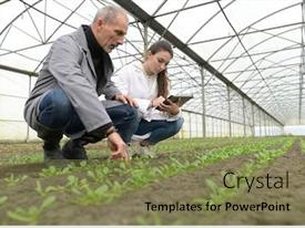 Greenhouse Powerpoint Templates W Greenhouse Themed Backgrounds