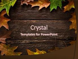 Presentation design featuring art - autumn leaves on dark wooden background and a wine colored foreground.