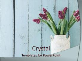 Beautiful PPT layouts featuring chic - art - bouquet of tulip backdrop and a lemonade colored foreground.