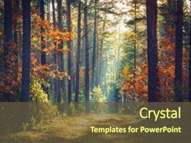 colorful presentation theme enhanced with colorful forest with sun backdrop and a tawny brown colored foreground