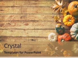 Harvest Squash Happy Thanksgiving Day Powerpoint Templates W