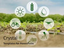 5000+ Agriculture PowerPoint Templates w/ Agriculture-Themed