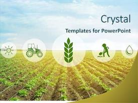 Agriculture Powerpoint Templates W Agriculture Themed