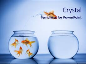 Colorful PPT theme enhanced with background - gold fish jumping from one backdrop and a sky blue colored foreground.