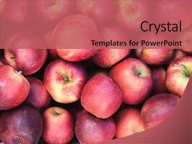 Beautiful slide set featuring background of red apples close backdrop and a coral colored foreground.