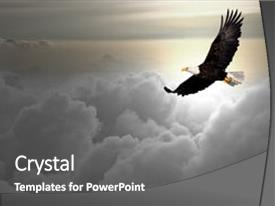 Cool new theme with bald eagle flying above backdrop and a gray colored foreground.