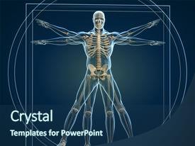 Theme enhanced with body and skeleton in vitruvian background and a ocean colored foreground.