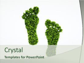 50 carbon foot print powerpoint templates w carbon foot print theme featuring carbon foot print isolated 3d render ecological footprint background and a soft green maxwellsz