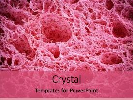 Cell Biology Powerpoint Templates W Cell Biology Themed