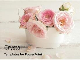 Amazing theme having chic - pink flowers in a vase backdrop and a soft green colored foreground